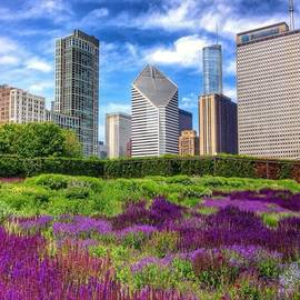 Paul Velgos - Chicago Skyline At Lurie Garden
