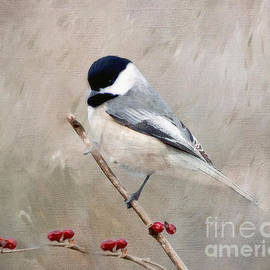 Kerri Farley - Chickadee and Berries