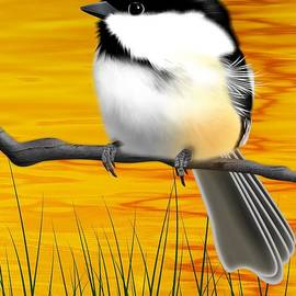 John Wills - Chickadee on a branch