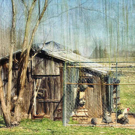 Kathy Jennings - Chicken Coop