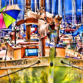 Diana Sainz - Chico Sail Boat By Diana Sainz