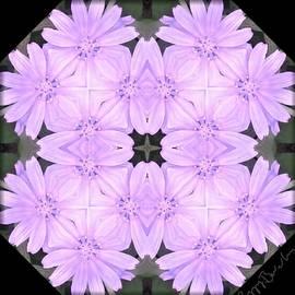 Peggy Beverley - Chicory Flower Mirrored Digital Art