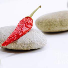 Tanja Riedel - Chili of Naturestones