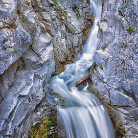 Adam Romanowicz - Christine Falls in Mount Rainier National Park