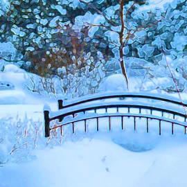 Douglas MooreZart - Christmas Eve Storm and the Little Garden Bridge