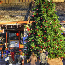 Wendy Elliott - Christmas in Sedona