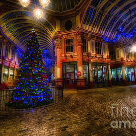 Jack Torcello - Christmas Tree HDR 03 cool