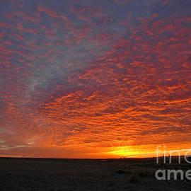 Nick  Boren - Christmas Valley Sunrise