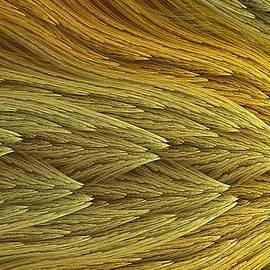 Doug Morgan - Chromatic Golden Appeal 16x9