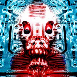 Del Gaizo - Circuit Skull
