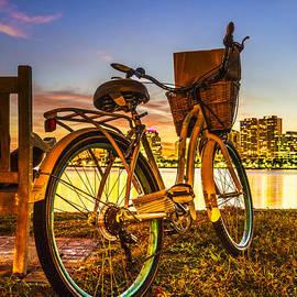 Debra and Dave Vanderlaan - City Bike
