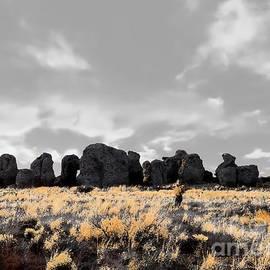 Tim Richards - City of Rocks