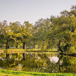 Steve Harrington - City Park Lagoon 4