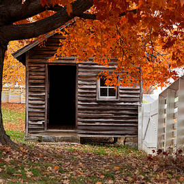 Beth Anthony - Civil War Cabin