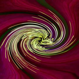 Debbie Oppermann - Claret Red Swirl Clematis