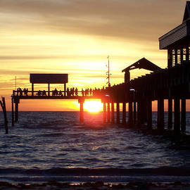 David T Wilkinson - Clearwater Beach Pier