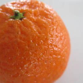 Tina M Wenger - Clementine