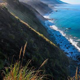 Adam Pender - Cliff Grass at Big Sur
