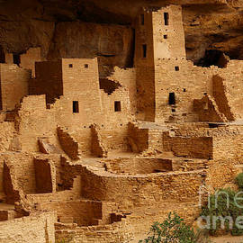 Marty Fancy - Cliff Palace