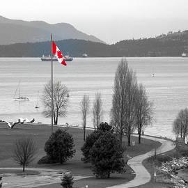 Brian Chase - Coastal Canadian Flag