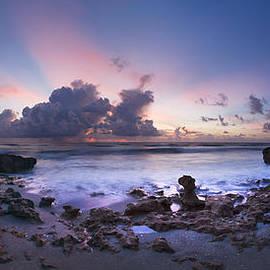 Debra and Dave Vanderlaan - Coastal Panorama