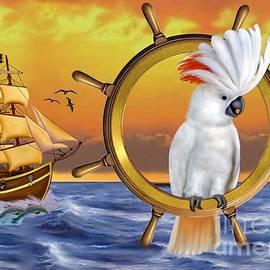 Glenn Holbrook - Cockatoo Treasure Quest