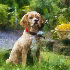 Thomas Woolworth - Cocker Spaniel Outside 06