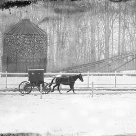 David Arment - Cold Amish Buggy and Corn Crib BW