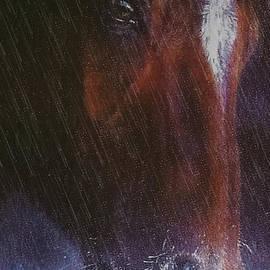 M and L Creations - Cold Hard Rain