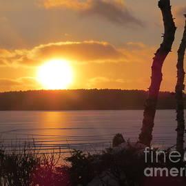 Brenda Ketch - Cold January sunset