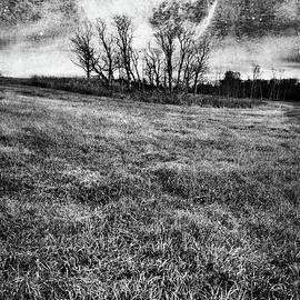 Theresa Tahara - Cold Nights Under The Harvest Moon