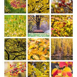 Alexander Senin - Collage October - Featured 3