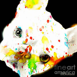 Barbara Chichester - Color Me Frenchie