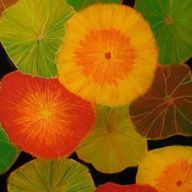 Anna Skaradzinska - Color Splash 5