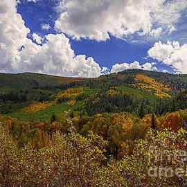 Janice Rae Pariza - Colorado Autumn Afternoon