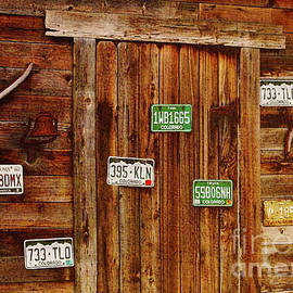 Janice Rae Pariza - Colorado Barn Door
