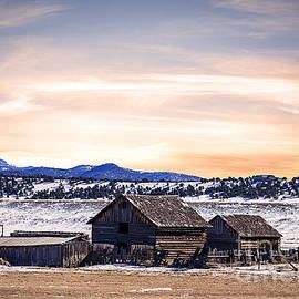 Janice Rae Pariza - Colorado Barns Landscape