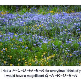 Janice Rae Pariza - Colorado Mountain Flowers