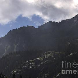 Janice Rae Pariza - Colorado Mountain Morning