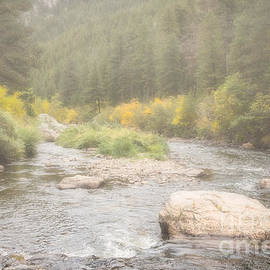 Jon Burch Photography - Colorado Trout Stream