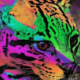 Kathleen Struckle - Colorful Cat