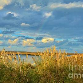 Bob Sample - Colorful Coastline