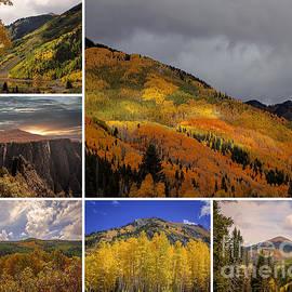 Janice Rae Pariza - Colorful Colorado