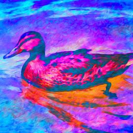 Priya Ghose - Colorful Duck Art by Priya Ghose