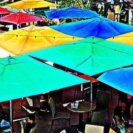 CJ Anderson - Colorful Millennium Park