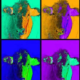 Ann Powell - Colorful Pop Art Cows art