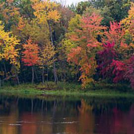 Les Palenik - Colorful trees along the river