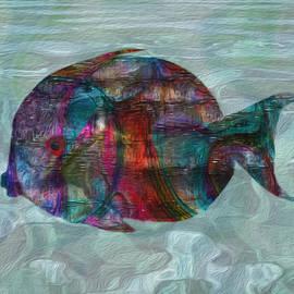 Jack Zulli - Colorful Tropical Fish 2