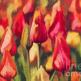 Darren Fisher - Colorful Tulips