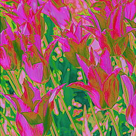 Photographic Art and Design by Dora Sofia Caputo - Colorful Tulips Pop Art
